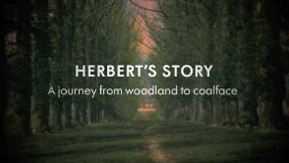 Mratyn Hey - Herbert's Story video